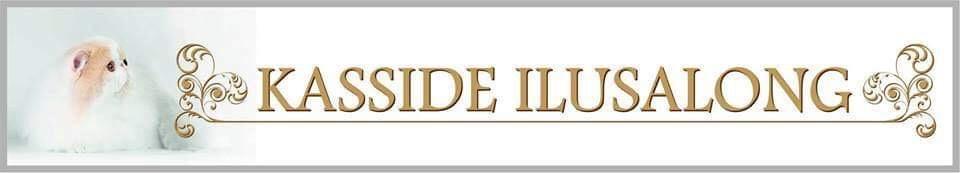 kasside ilusalong logo